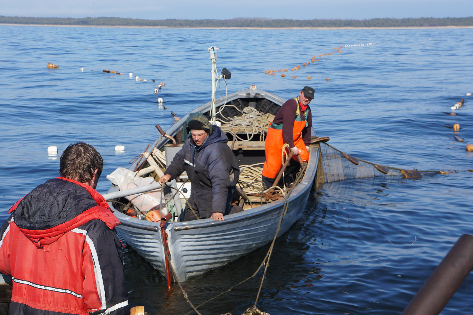 Kihnu Island, Estonia_putting in Baltic herring fyke nets.J.Plaan