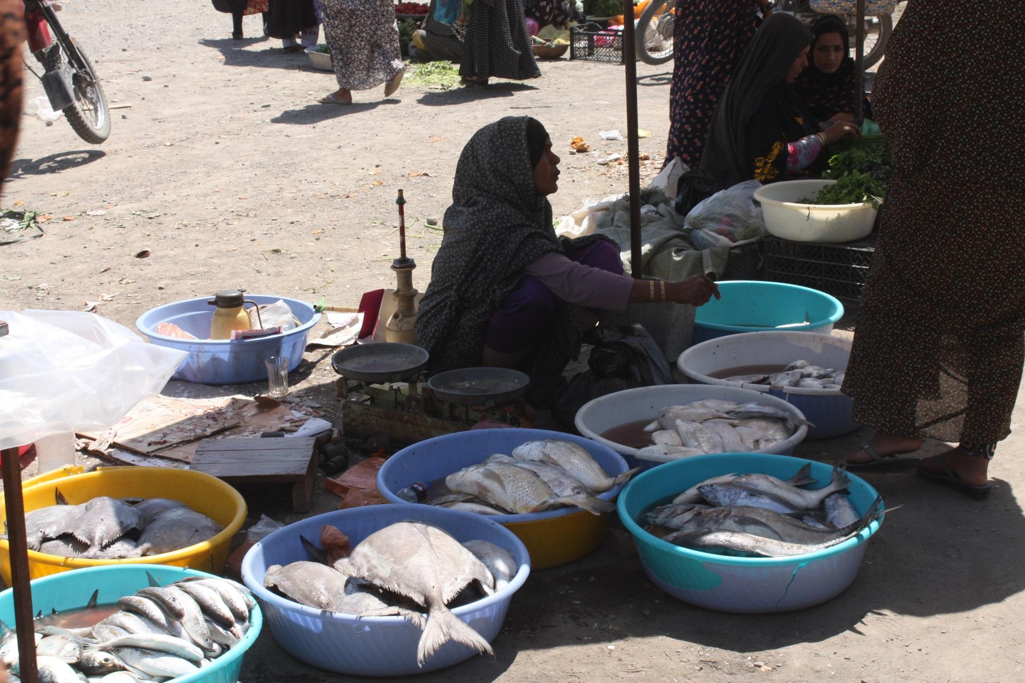 iran-minab-fish-market_o-randin-97b7b356078f0c3e9de9175beaab2077b4739596
