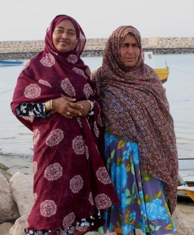 'Women and Gender in SSF' online survey