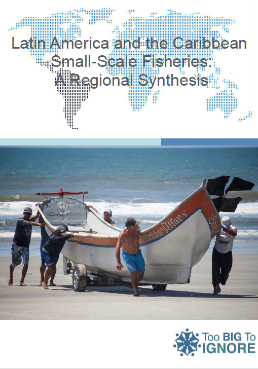 E-consultation for 'Latin America and the Caribbean Small-Scale Fisheries: A Regional Synthesis'