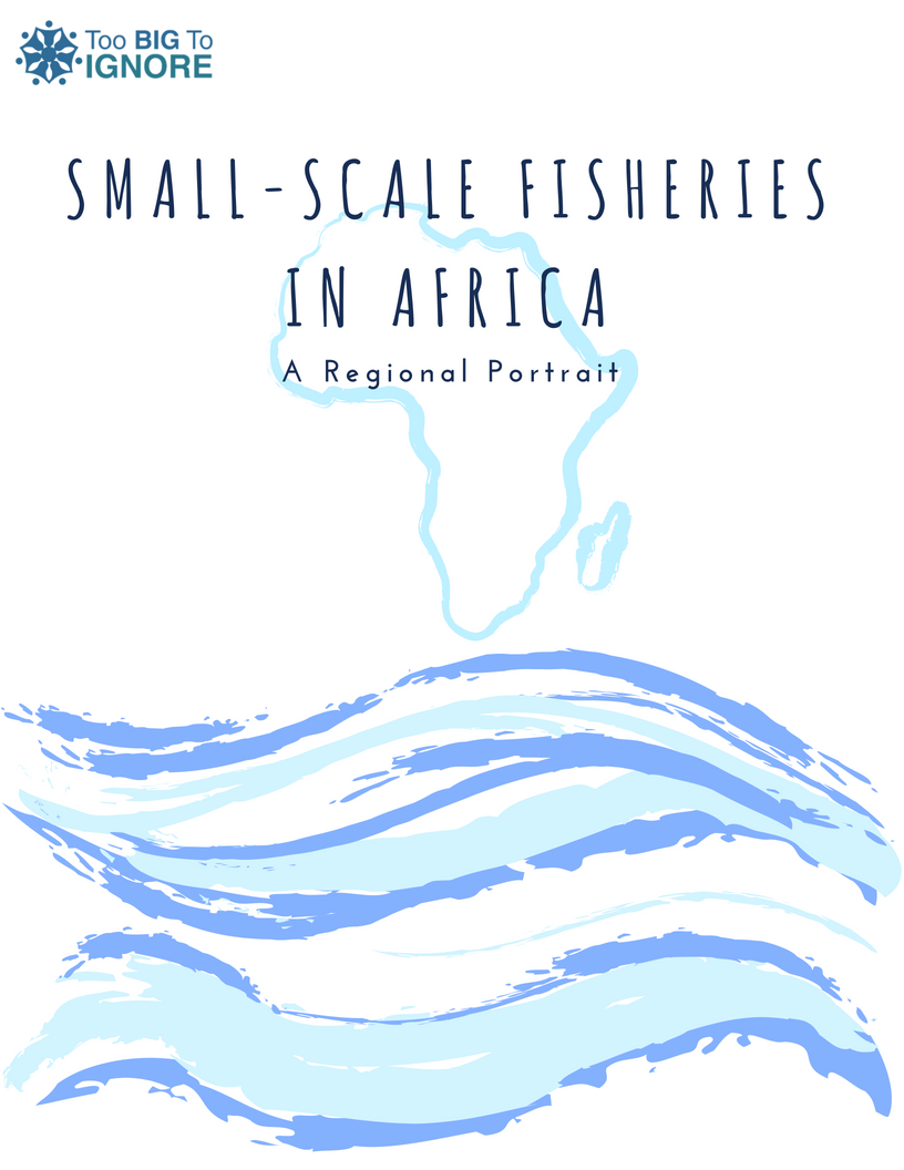 E-book: Small-Scale Fisheries in Africa: A Regional Portrait